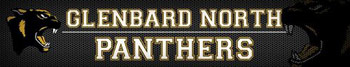 Chiropractic Bartlett IL Community Partners Glenbard North Panthers